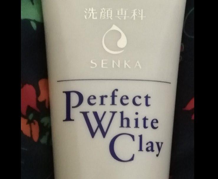 洗顔専科パーフェクトホワイトクレイの口コミは?写真つきで使い方を紹介
